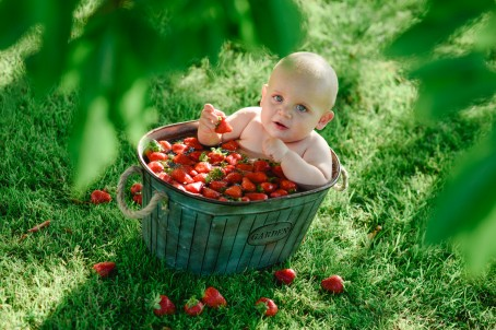 Strawberry Baby Bath Photo Shoot